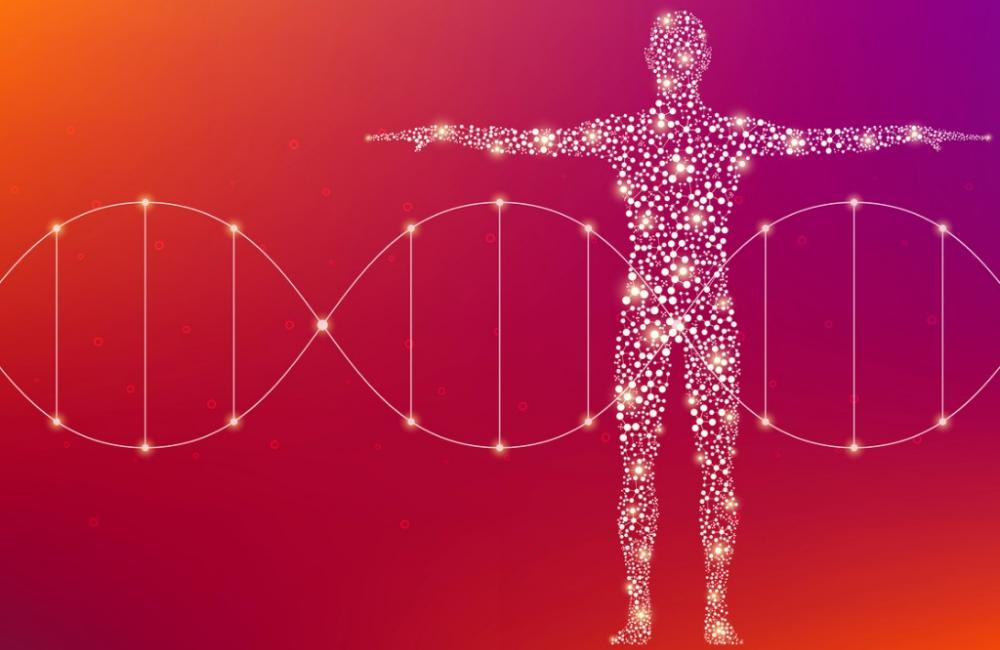 Hot Clicks Space Changed An Astronauts Dna